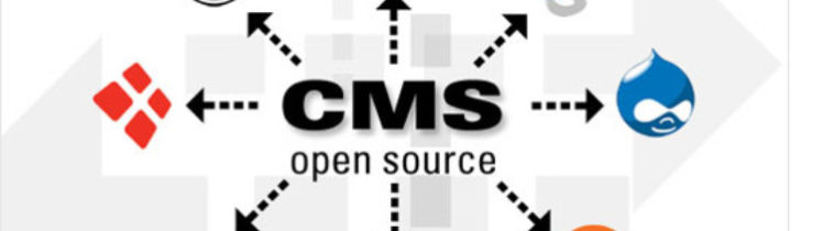 Best cms platforms -Elect