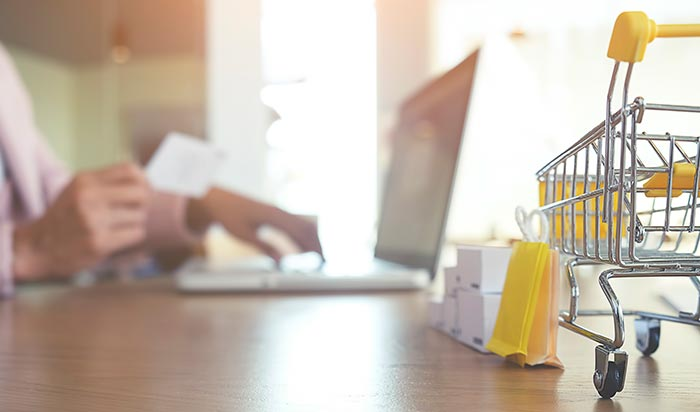 e-Commerce Development Services - Elect