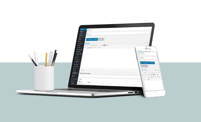 Web Design Services - Elect